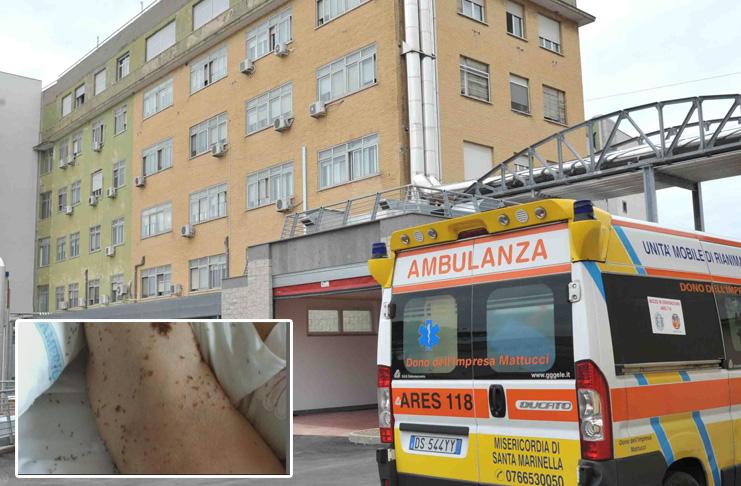Napoli, formiche nel letto d'ospedale. De Luca: sanità inquinata da camorristi